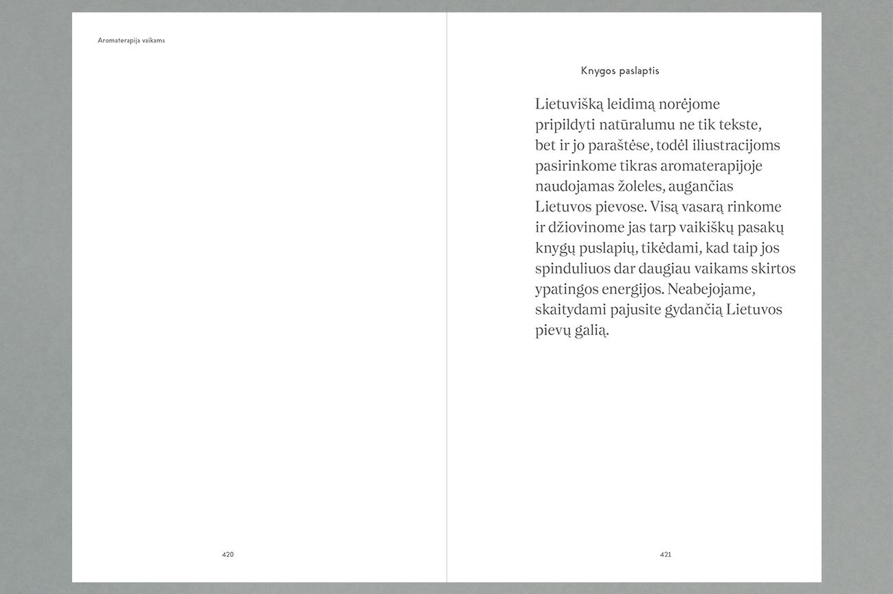 Knygos Vidus 8B